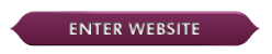 enter TomorrowWorld website